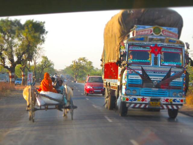cows & trucks