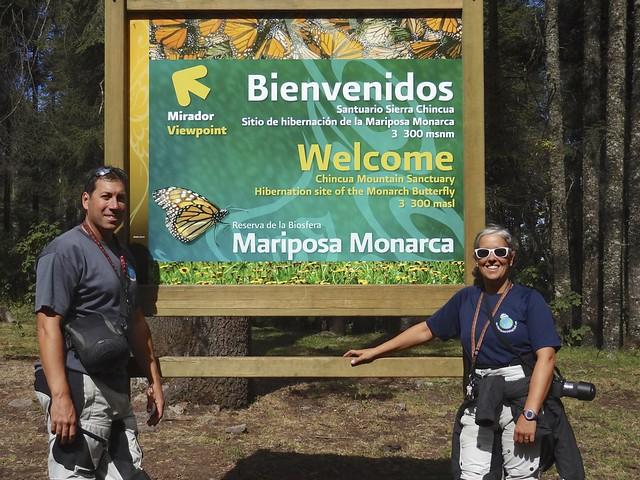 Monarchs 092