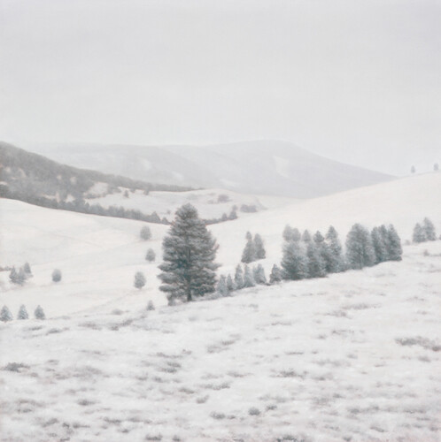 Pamela Kendall Schiffer, October Snowfall, 2010