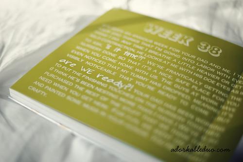 custom diy weekly maternity album