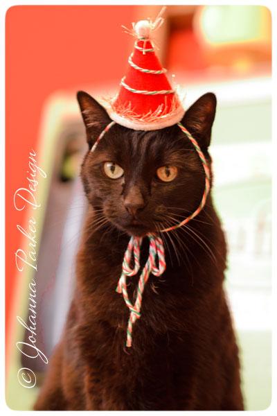 Jack-Seriously-Festive