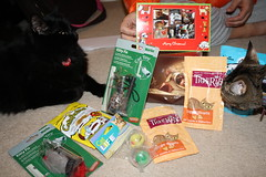 Our Secret Paws stash