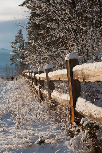 2012.12.18 Snow (6)