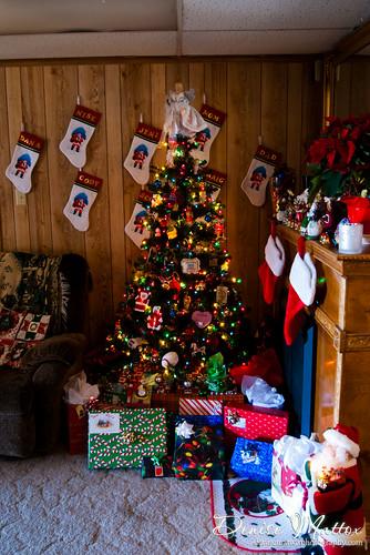 045: Christmas tree