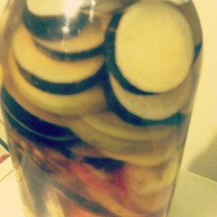 Giant jar of pickled radishes.