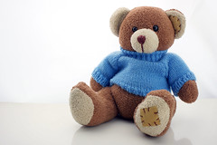 Teddy Bear Photoshoot 15