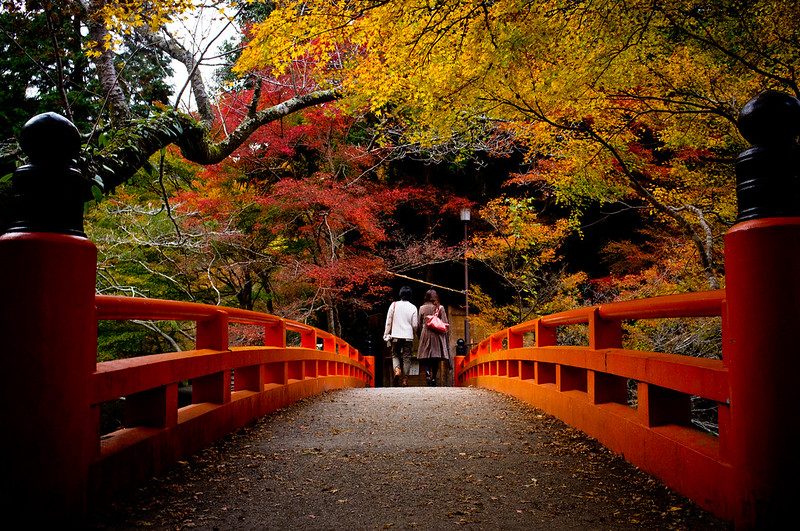 farewell, 2012 #1 (Saimyou-ji temple, Kyoto)