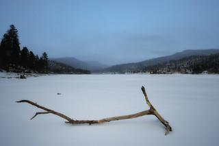 Winter Driftwood, Lake Maloya