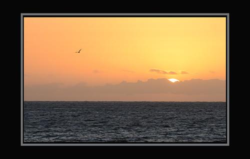 sea island islands tenerife canary canaries tenerife3