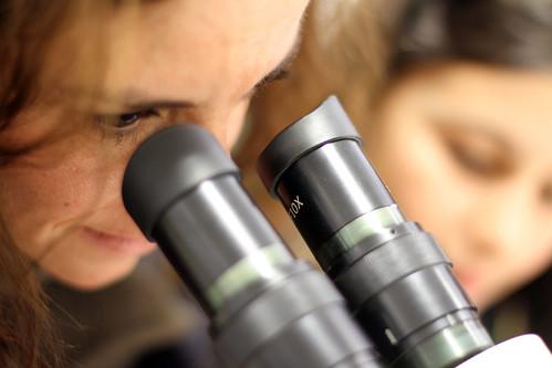Una investigadora mira por un microscopio
