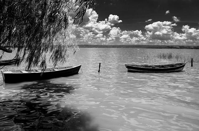 Canoas en reposo