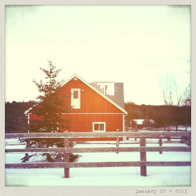 red barn - day 22