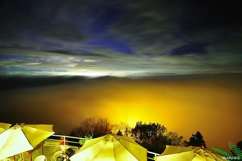 Orange fogs @若茵農場