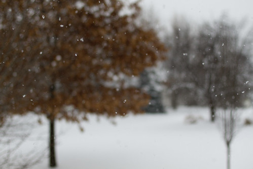 snow-2832