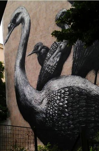 Graffiti_Vogel