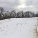 Small photo of Battelle Darby Creek Sledding Hill