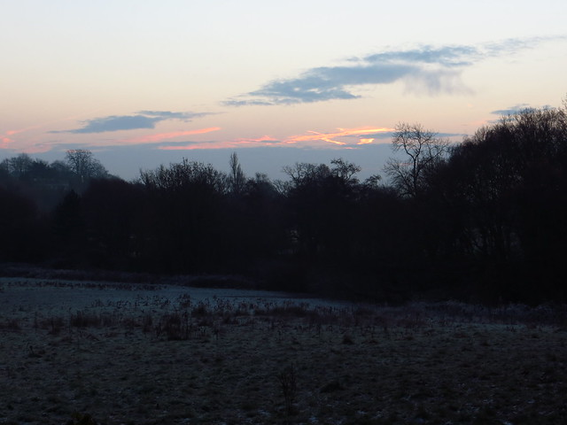 The Ladies' Pond Meadow at Dawn