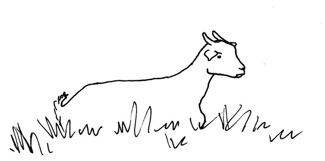 Line Drawing Goat : Goat line drawing