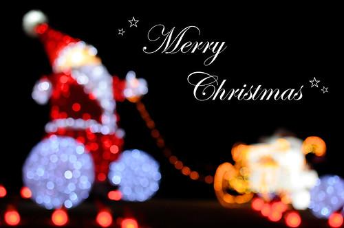 Merry Christmas☆ - 無料写真検索fotoq