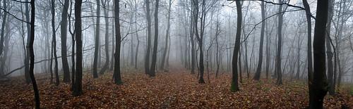 panorama hiking croatia zagreb sljeme hrvatska medvednica cityofzagreb planinadonja