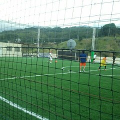 chain-link fencing(0.0), tennis court(0.0), soccer-specific stadium(0.0), baseball field(0.0), arena(0.0), sport venue(1.0), grass(1.0), player(1.0), football(1.0), net(1.0), stadium(1.0),
