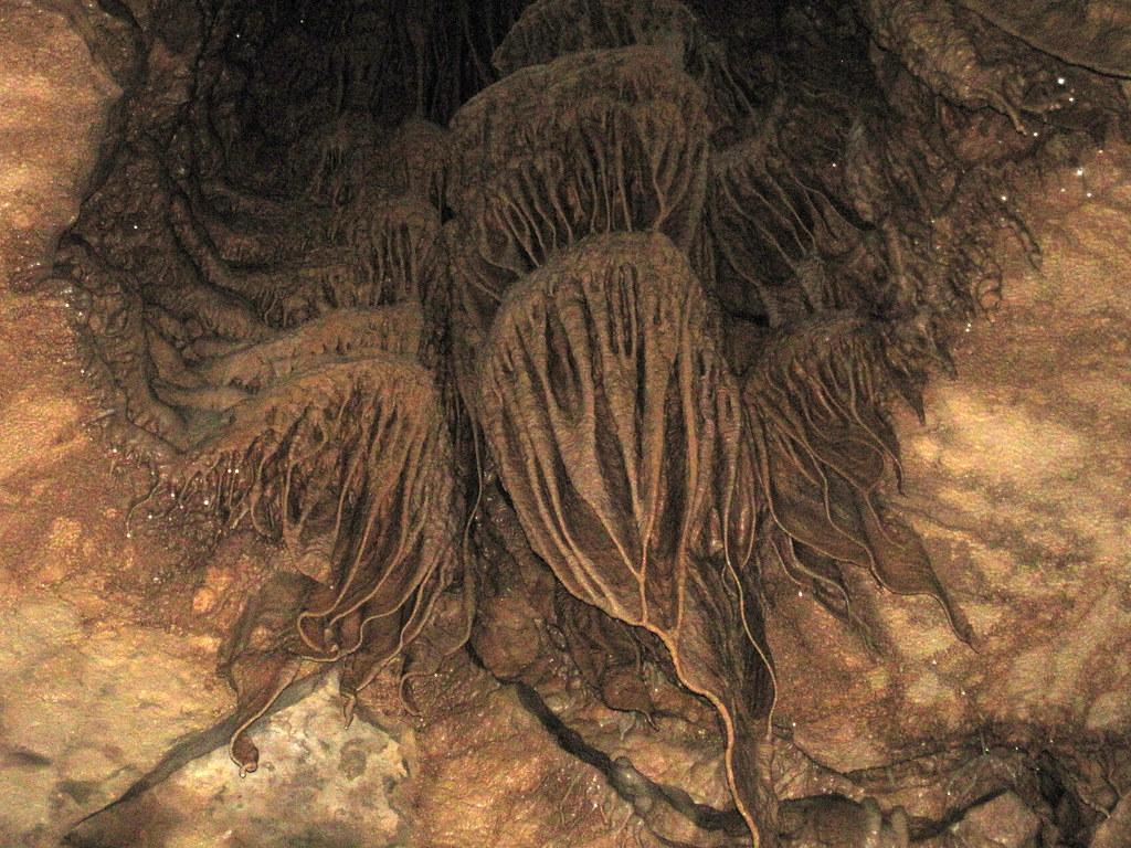Travertine flowstone & draperies in Great Onyx Cave (Flint Ridge, Mammoth Cave National Park, Kentucky, USA)
