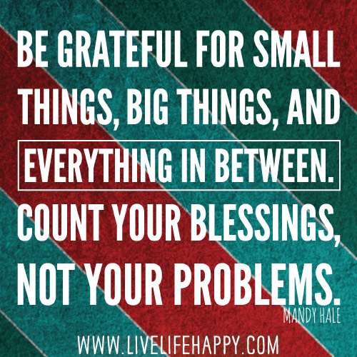 Be grateful for small things, big things, and everything in between. Count your blessings, not your problems. -Mandy Hale