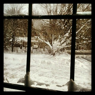 """looking through the glass""  #newhampshire #snow #winter #picoftheday"