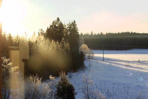 morning trees winter sky sunlight snow reflection finland landscape frost flare orimattila