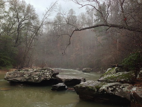 nature water rock fog creek branch outdoor alabama steam tuscaloosa iphone hurricanecreek thechallengefactory mbend uploaded:by=flickrmobile flickriosapp:filter=nofilter