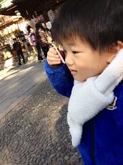 おみくじとらちゃん 2013/1/13