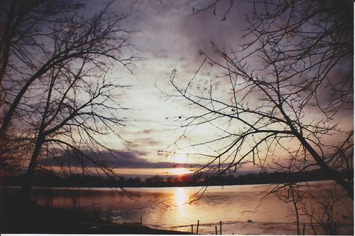 trees sunset lake color film analog 35mm landscape outdoors lomo lomography december fuji superia iso400 michigan 2012 coldwater fujicolor coldwaterlake lasardina branchcounty laurenpaljusaj