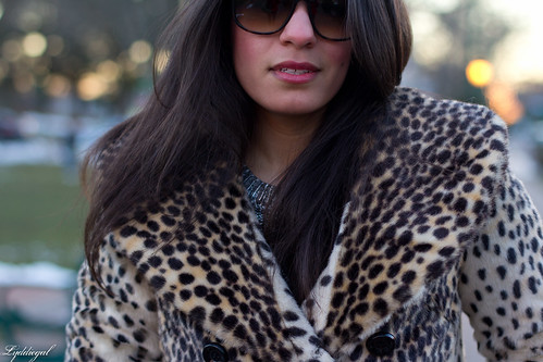 leopardess-9.jpg