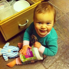 11 months old! #andintoeverything