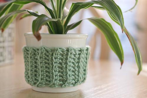 Plant cozy.