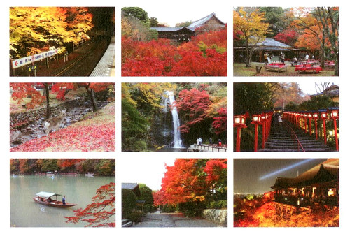 明信片-盒子2012京都正面
