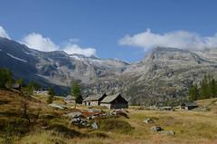 Alpe Lareccio, Valle Antrona