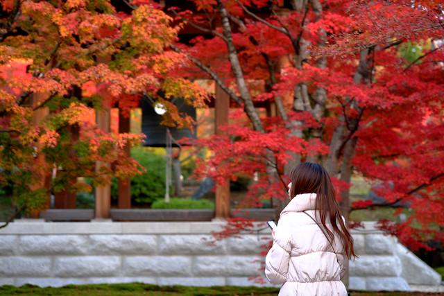 梵鐘を包む秋の色彩