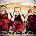 Three wise novices