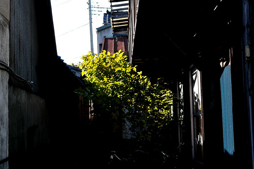 maebashi2012_18_kpax