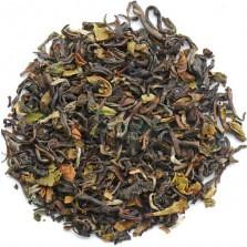 Darjeeling Tea Garden Tours & Tea Tourism