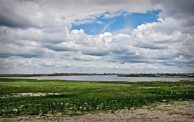 Las orillas del río Chobe. Parque nacional de Chobe. Botsuana.