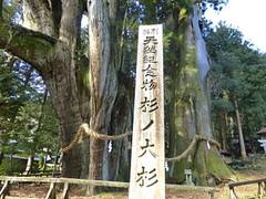 oosugi2013-10