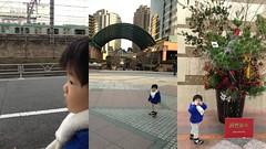 夕方の散歩 2013/1/5