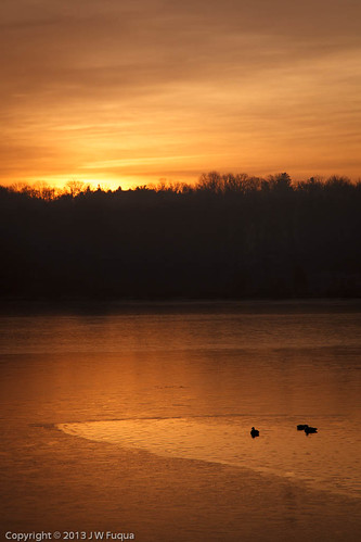 nature birds landscape pennsylvania waterfowl sunrisesunset buckscounty canadageese peacevalleypark newbritian geeseandswans jwfuquaphotography jerrywfuqua