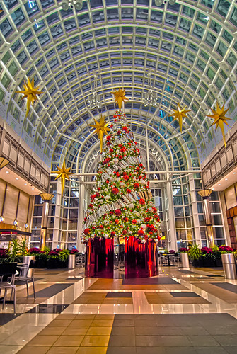 Image of big decorated Christmas tree in the mall by DigiDreamGrafix.com