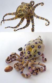 Felted purse - Blue-Ringed octopus
