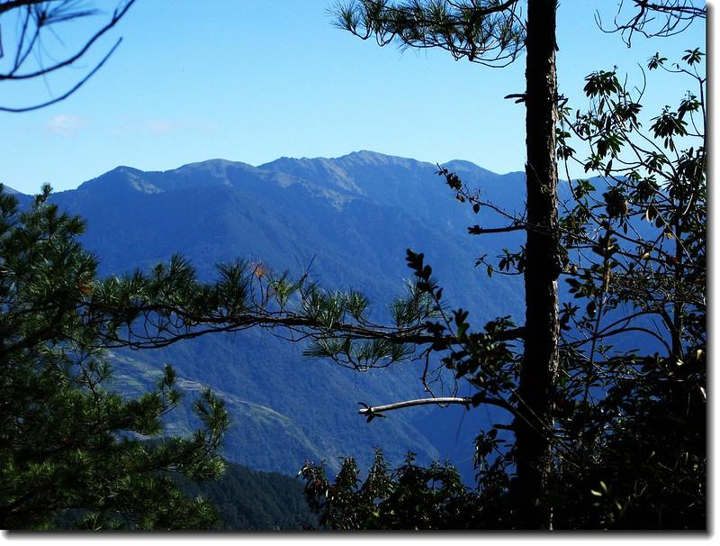 2240營地東眺合歡主峰、合歡東峰