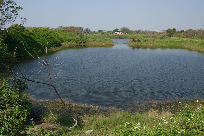 湖畔散拍 (其實是魚塭打鳥拉 XDDDD)