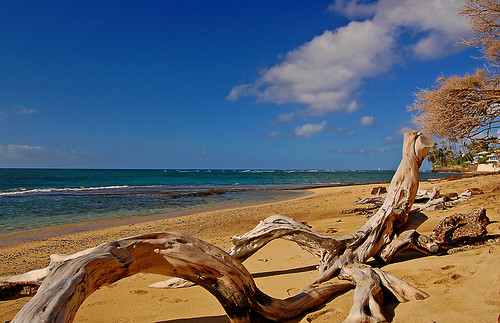 ocean sea sky beach clouds hawaii sand nikon oahu horizon driftwood pacificocean shore yabbadabbadoo d40 diamondheadbeachpark nikond40 diamondheadroad kuileicliffs